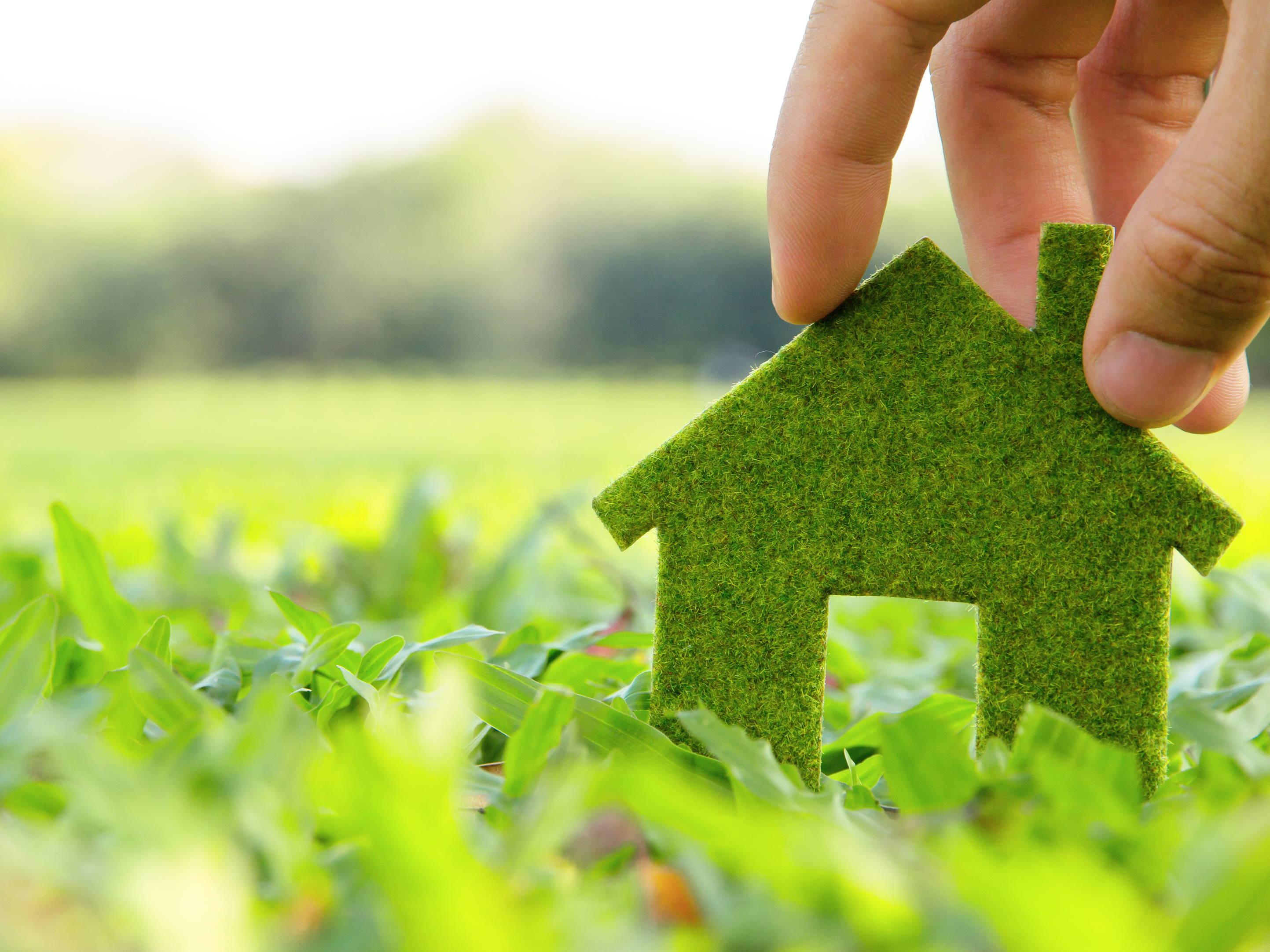 Eco homes: What is the Green Homes Grant and am I eligible for it?
